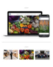 Cavailier_Website.jpg