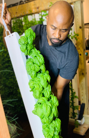 Urban Seed-To-Sales Farm Offers Fresh and Flavorful Local Produce