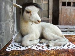 agneau4 NWS