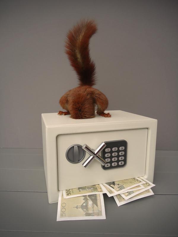 Écureuil sur coffre-fort