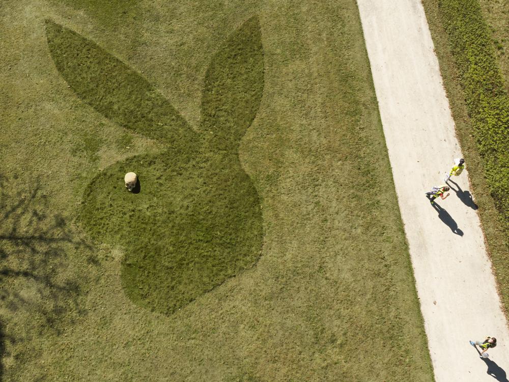 Bunny de la Garenne
