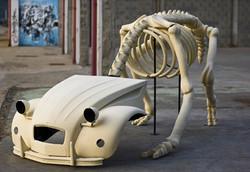 deupatosaurus NWS 5