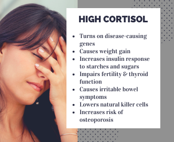 Cortisol and Muscle Loss