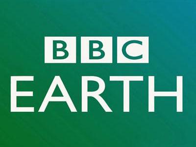 BBC E