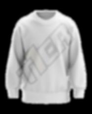 SweatshirtSample.png