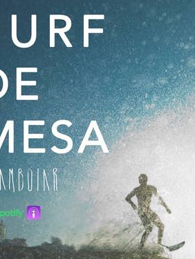 Conversamos com a Flamboiar: tipo mídia de surf, só que mais legal
