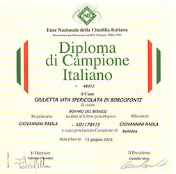 Diploma Ch It Giulietta.jpg