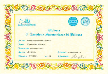Diploma San MArino Mara_page-0001.jpg