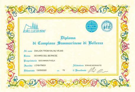 Diploma San Marino Emilio_page-0001.jpg