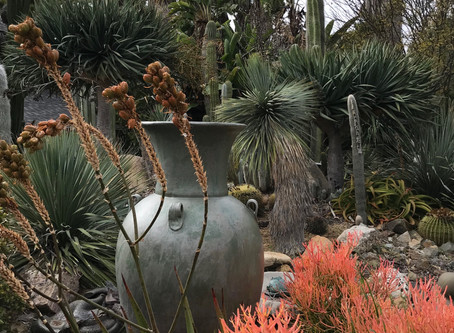 NEWS: November Featured Garden and Studio Sale