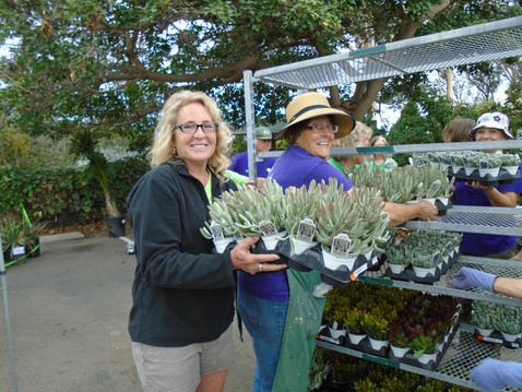 NEWS: SDBG Fall Plant Sale
