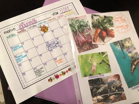 GROW IN ABUNDANCE: Journal your garden.