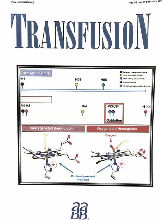 Transfusion cover - February 2016!