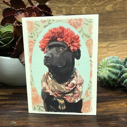 Frida Dog