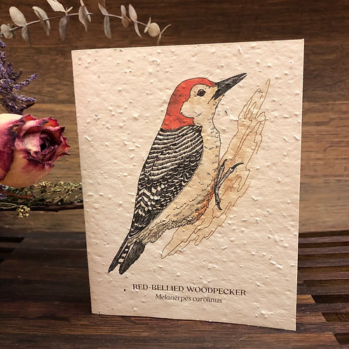 Plantable Woodpecker Card