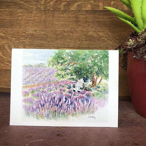 Sit Amongst The Lavender