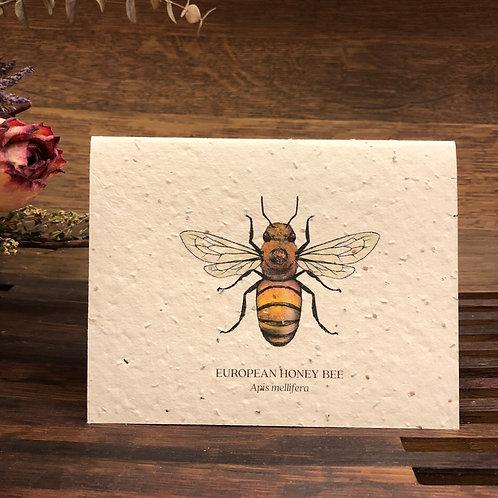 Plantable Bee Card
