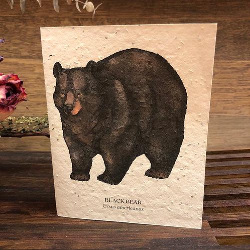 Plantable Bear Card