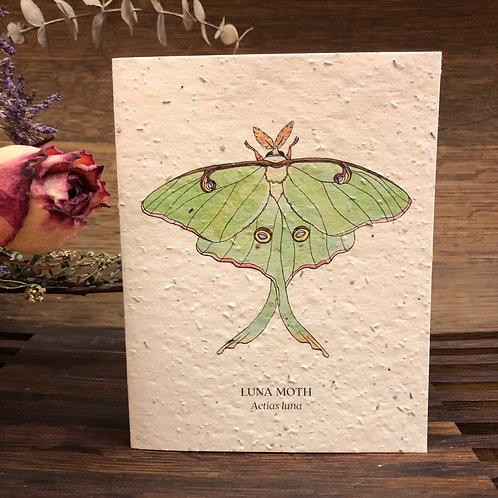 Plantable Luna Moth Card