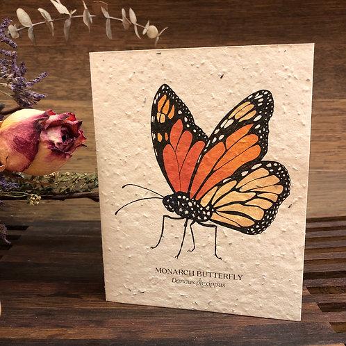 Plantable Monarch Card