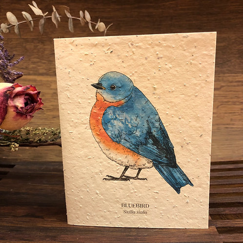 Plantable Bluebird Card