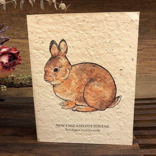 Plantable Rabbit Card