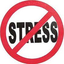 no_stress.jpeg