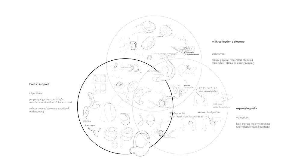 venn diagram.jpg