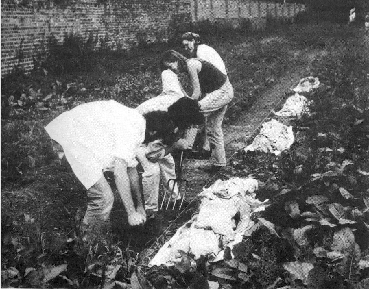 Human Remains: Burial and Preservation was a temporary work for a group sculpture exhibition in Gunnersbury Park, London. Members of the public and students from the BA Hons Fine Art Degree at Birmingham Institute of Art and Design helped to dig a ditch 140 ft long. 1990