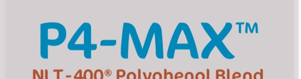 P4-MAX