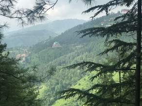 Exploring the Hidden Gems around Shimla