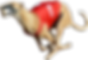 9-96995_one-of-the-greyhounds-racing-at-