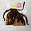 Thumbnail: smallbags velours lisse changeant  / dark beige velvet reflecting blue bags