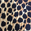 Thumbnail: smallbags leopard / leopard print bags