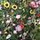 Thumbnail: smallbags imprimé photo prairie / flower meadow photo print bags