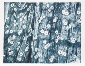 2014  lithographie  48 x 63 cm  20 ex./ BFK Rives