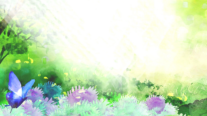 bannerbackground.png