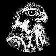 halcones rojos san isidro.png