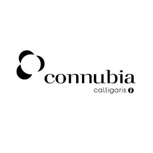 17 Logo-Connubia-Calligaris.jpg