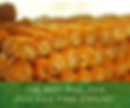The Best Baklava You Can Find Online.png