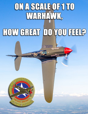 Warbird Meme : How great do you feel?