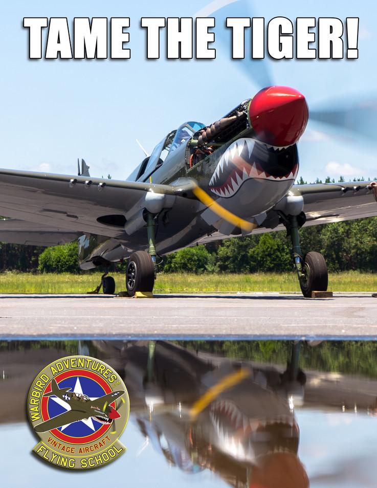 Warbird Meme : Tame the Tiger!