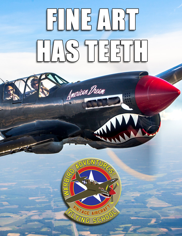 Warbird Meme : Fine art has teeth