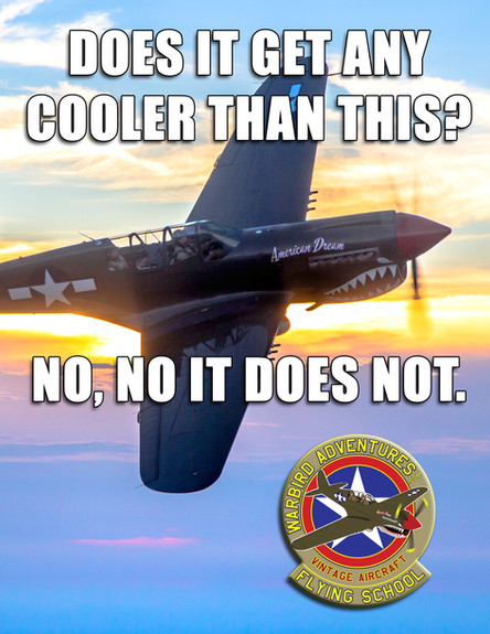 Warbird Meme : Does it get any cooler?