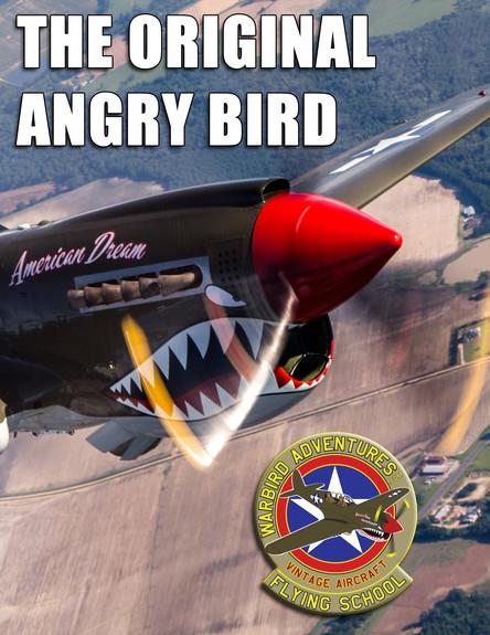 Warbird Meme : Angry Bird