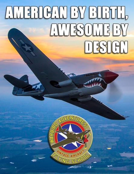 Warbird Meme : American by Birth
