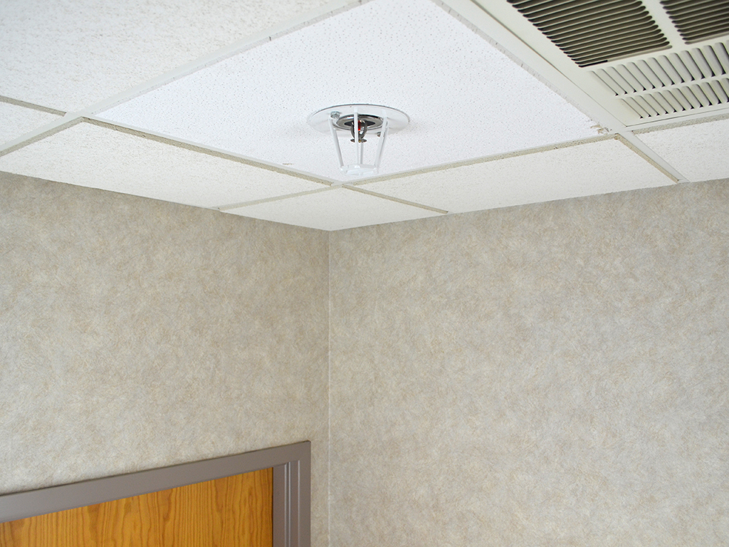 Ceiling Mount Fire Sprinkler Guard