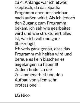 Feedback_NicoZimmermann3.png
