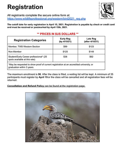 The Bird Course_Page_3.jpg