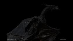 Dragon Reflection Pass